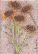 Rust Pastels Metal Prints - Sun Pods In Bloom Metal Print by Robyn Louisell