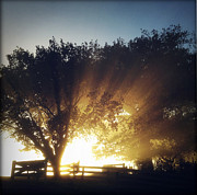 Sun Rays Print by Les Cunliffe
