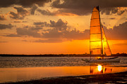 Dunedin Prints - Sun Sail Print by Marvin Spates