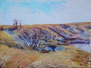 Helen Campbell - Coulee Colors
