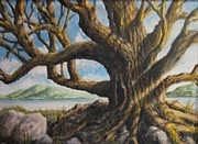 Tree Roots Paintings - Sun Tree by Ronald Barnes