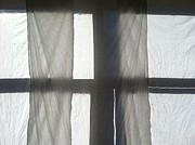 Anna Villarreal Garbis Metal Prints - Sun Up Through Lukes Curtains Metal Print by Anna Villarreal Garbis