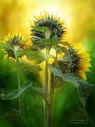 Sunflower Art Posters - Sun Worshipers Poster by Carol Cavalaris