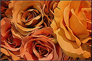 Peach Originals - Sunburnt Roses by Dora Sofia Caputo