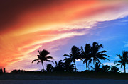 Tropical Sunset Framed Prints - Sunburst Framed Print by Laura  Fasulo