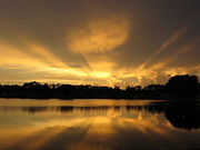 Polk County Florida Photos - Sunburst reflection by Zulfiya Stromberg