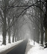 Copenhagen Denmark Prints - Sunday Afternoon Winter Print by Odd Jeppesen