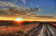 Backroad Prints - Sundown Print by Thomas Danilovich