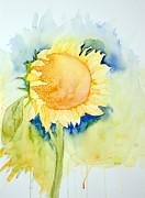 Laurel Best - Sunflower 1