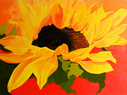 Jennifer  Blenkinsopp - Sunflower at sunset