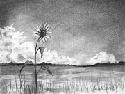 Landscapes Drawings Metal Prints - Sunflower Cloud Metal Print by J Ferwerda