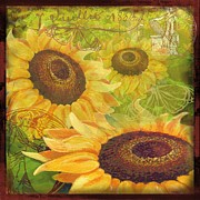 Sharon Marcella Marston - Sunflower Collage