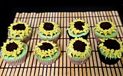 Tracy  Hall - Sunflower Cupcakes
