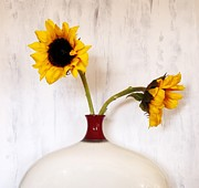 Red Vase Acrylic Prints - Sunflower DeCor Acrylic Print by Marsha Heiken