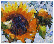 Arif-zenun  shabani - Sunflower from galica