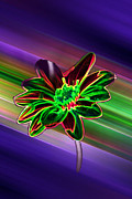 Filmstrip Posters - Sunflower In Neon Colors Poster by ImagesAsArt Photos And Graphics