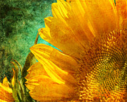 Www.paintedworksbykb.com Posters - Sunflower Poster by Karen  Burns