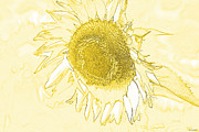 Concepts  Drawings - Sunflower Make Me Smile by Diana  Tyson
