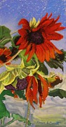 Flower Blooms Pastels Prints - Sunflower Print by Marion Derrett