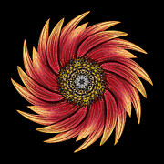David J Bookbinder - Sunflower Moulin Rouge...