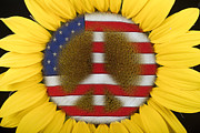 Usa Flags Framed Prints - Sunflower Peace Sign Framed Print by James Bo Insogna