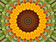 Annette Allman - Sunflower Power