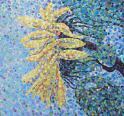 Renee Kilburn - Sunflower