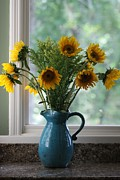 Flower Still Life Prints Posters - Sunflower Window Poster by Paula Rountree Bischoff