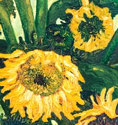 J Harris - Sunflowers #2g For...