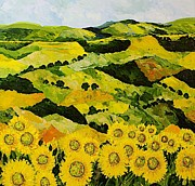 Allan P Friedlander - Sunflowers and Sunshine