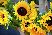 Saint-remy De Provence Prints - Sunflowers at Market Print by Brian Jannsen