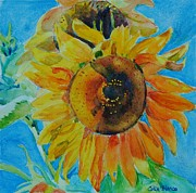 Celia Blanco - Sunflowers