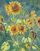 Sunflowers Paintings - Sunflowers by Dominique Amendola