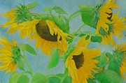 Sunflower Studio Art Framed Prints - Sunflowers in the Wind 2 Framed Print by K Joann Russell