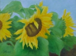 Sunflower Studio Art Framed Prints - Sunflowers In The Wind Colorful Original Sunflower Art Oil Painting Artist K Joann Russell           Framed Print by K Joann Russell