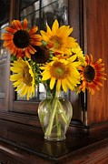 Girasol Posters - Sunflowers in Vase Poster by Karinna Marvill