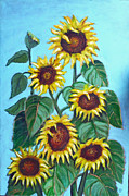 Lou Monti - Sunflowers
