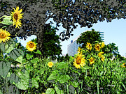 Wild Mixed Media Framed Prints - Sunflowers Outside Ford Motor Company Headquarters in Dearborn Michigan Framed Print by Design Turnpike