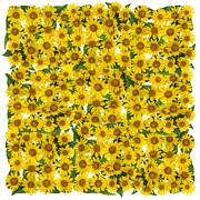 Aleksandr Volkov - Sunflowers square