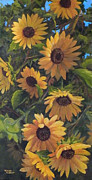Terry Albert - Sunflowers