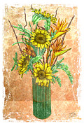 Rusty Drawings Framed Prints - Sunflowers Framed Print by Troy Brown