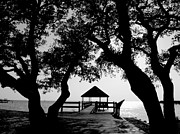 Monotone Prints - Sunlight on Currituck Sound Print by Steven Ainsworth