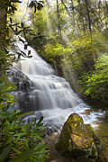 Rock Spring Trail Prints - Sunlight on the Falls Print by Debra and Dave Vanderlaan