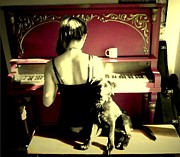 Sarah Quandt - Sunlight on the Keys