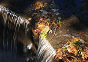 Natural Dam Prints - Sunlight on the Spillway Print by Lyle Hatch