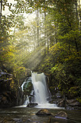 Fall River Scenes Prints - Sunlit Falls Print by Debra and Dave Vanderlaan