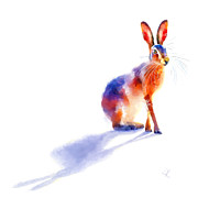 Denise Laurent - Sunlit Hare