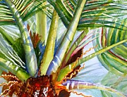Frond Painting Prints - Sunlit Palm Fronds Print by Carlin Blahnik