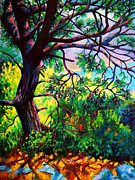 Impressionistic Landscape Paintings - Sunlit Tree in Turkish Landscape by Stephen Conroy