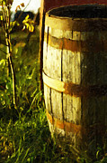 Sunlit Wooden Barrel-three Print by David Allen Pierson